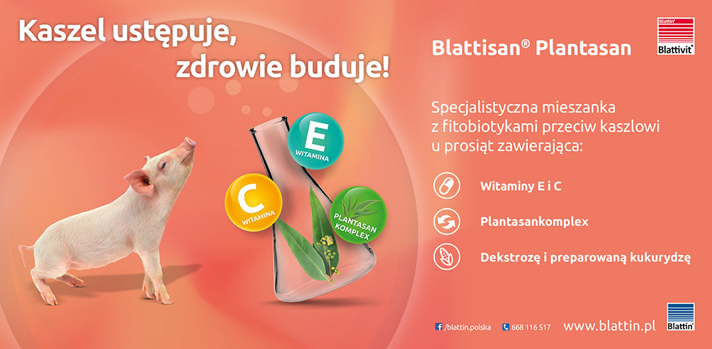 blattin-reklama-prasowa-3