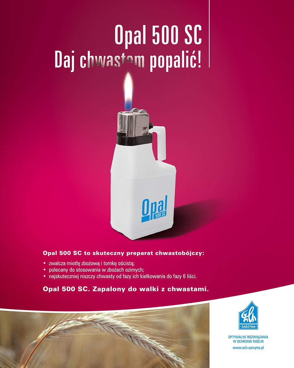 ciech-sarzyna-reklama-prasowa-7